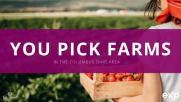 U-Pick Farms In Columbus Ohio